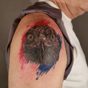eaglewatercolor
